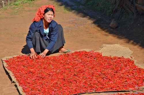 red_chillies_burma_yangon